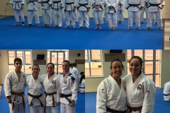 galeria_judo_adulto_01