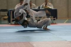 galeria_judo_adulto_06