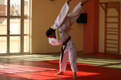 galeria_judo_adulto_05
