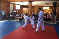 galeria_judo_infantil_01