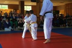 galeria_judo_infantil_02